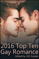 2016 Top Ten Gay Romance